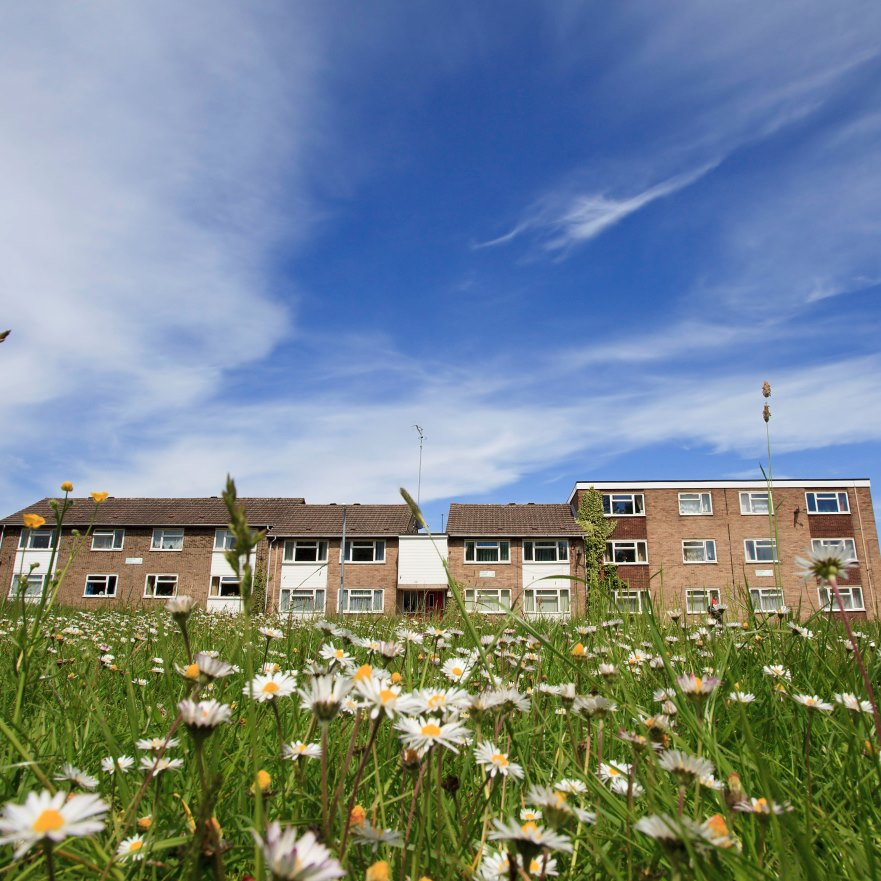 Council consults with tenants on changes to tenancy agreement
