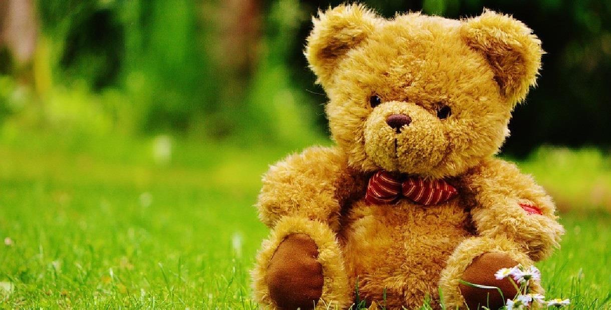 Teddy bear's picnic - CANCELLED